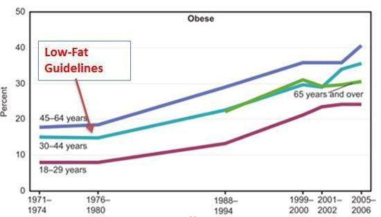 Grassi saturi obesi