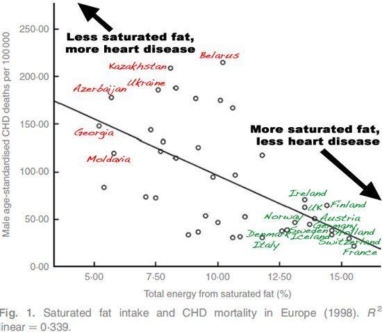 Grassi sani non provocano malattie cardiache