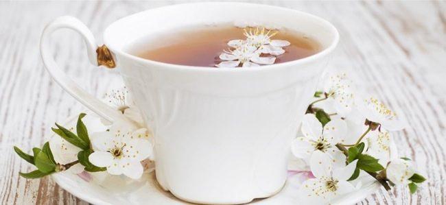 perdita di peso del tè verde google studioso