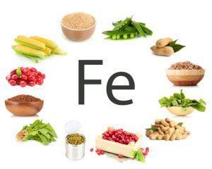 cibo che aumenta la digestione erbe che accelerano il metabolismo