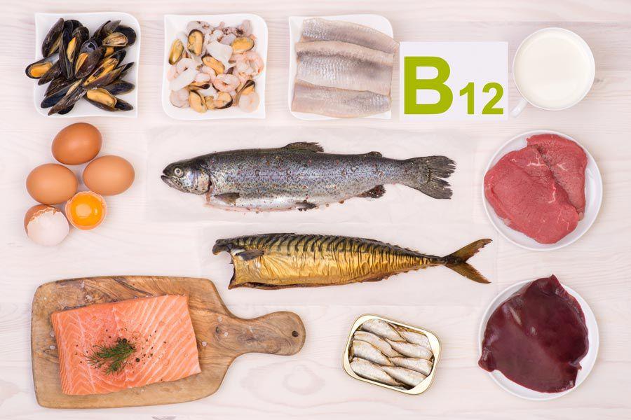 Vitamina B12, alimenti