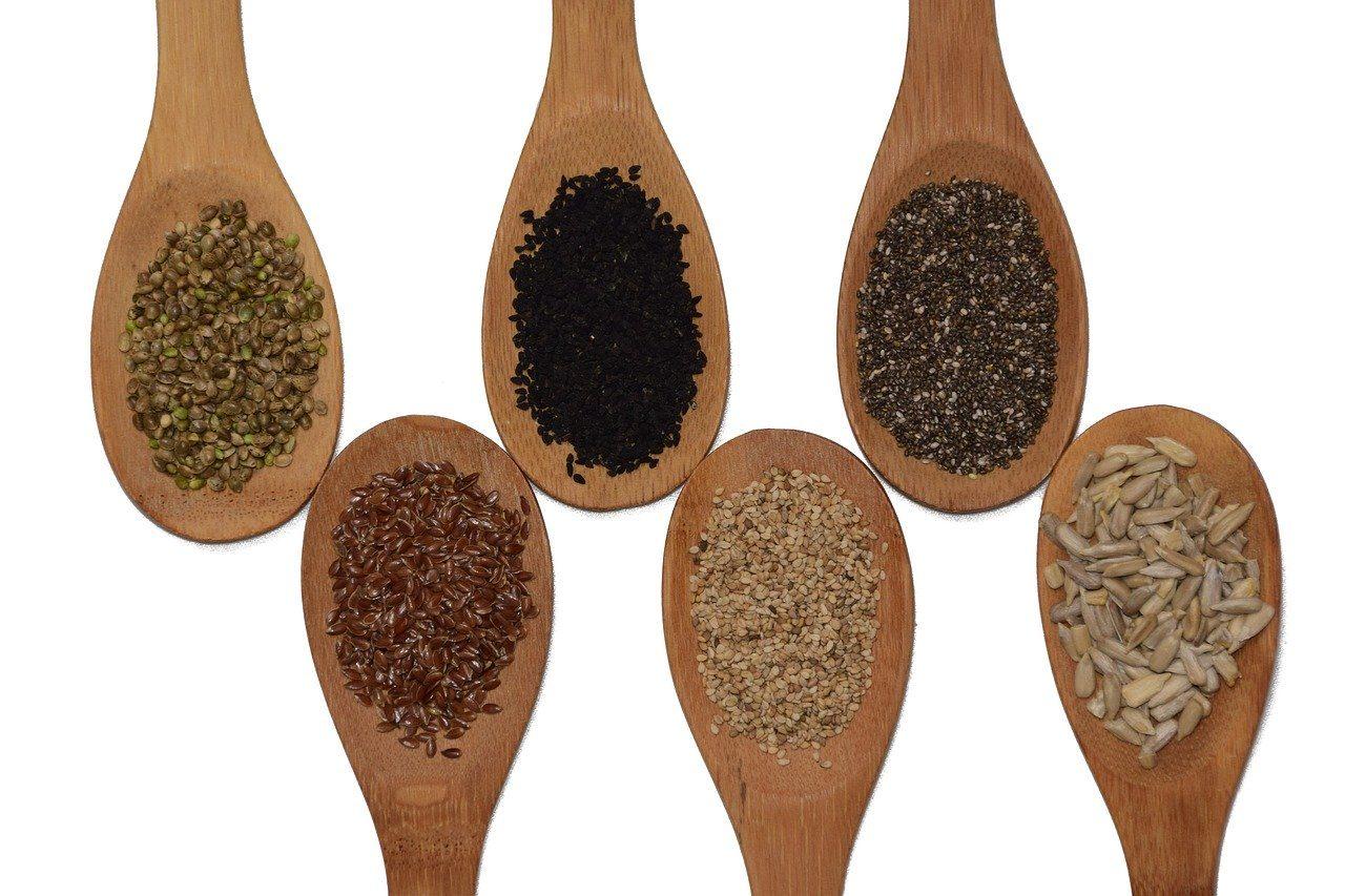 Alimenti ricchi di proteine semi oleosi