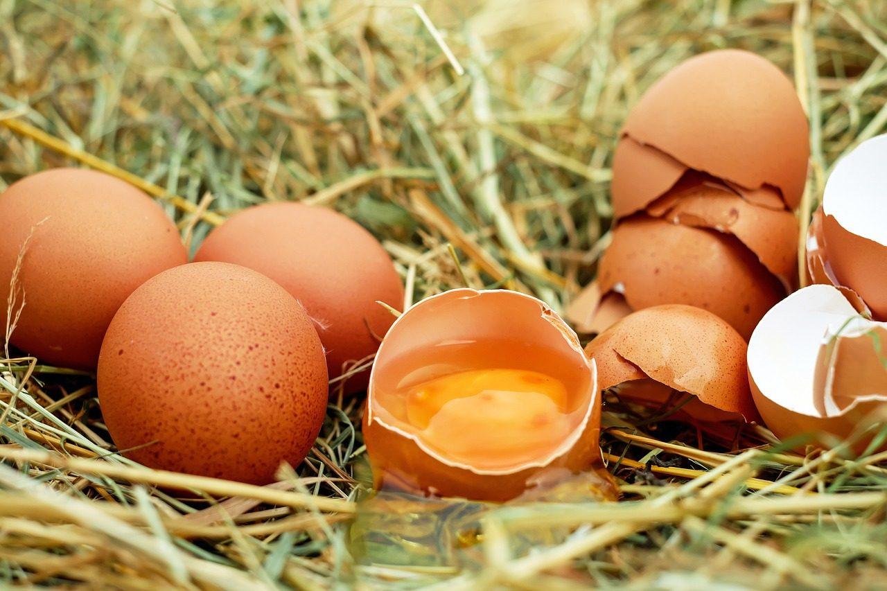 Alimenti ricchi di proteine uova
